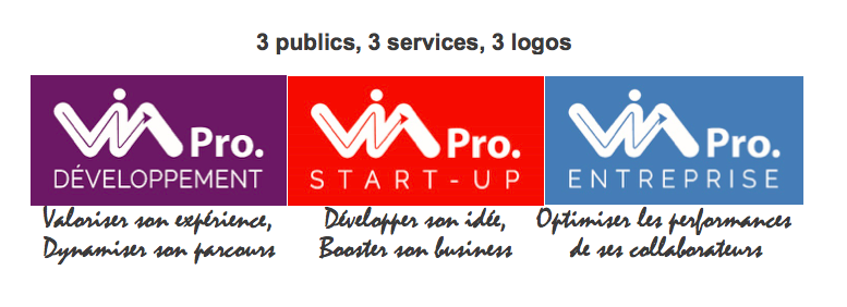 Via Pro services