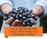 vae-et-expatriation-2